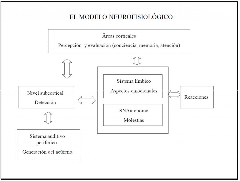 Modelo Neurofisiológico Tinnitus