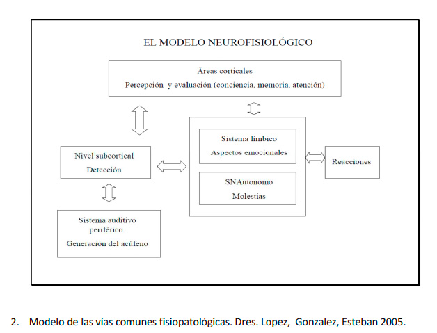 Modelo de las vías comunes fisiopatológicas. Drs. Lopez,  Gonzalez, Esteban 2005
