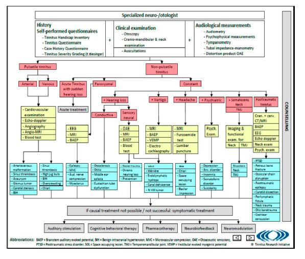 Algoritmo para el diagnóstico y la terapéutica en la gestión del tinnitus.